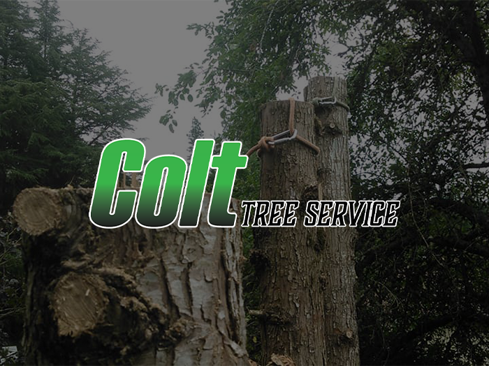 colttreeservice portcover 1